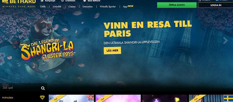 Spelare hos Sverige 13000