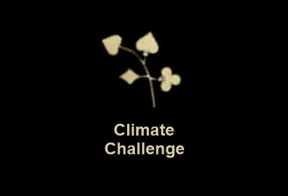 Poker chips 65629