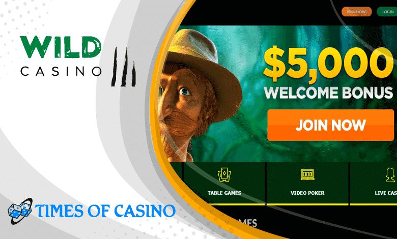 Surf casino 66393